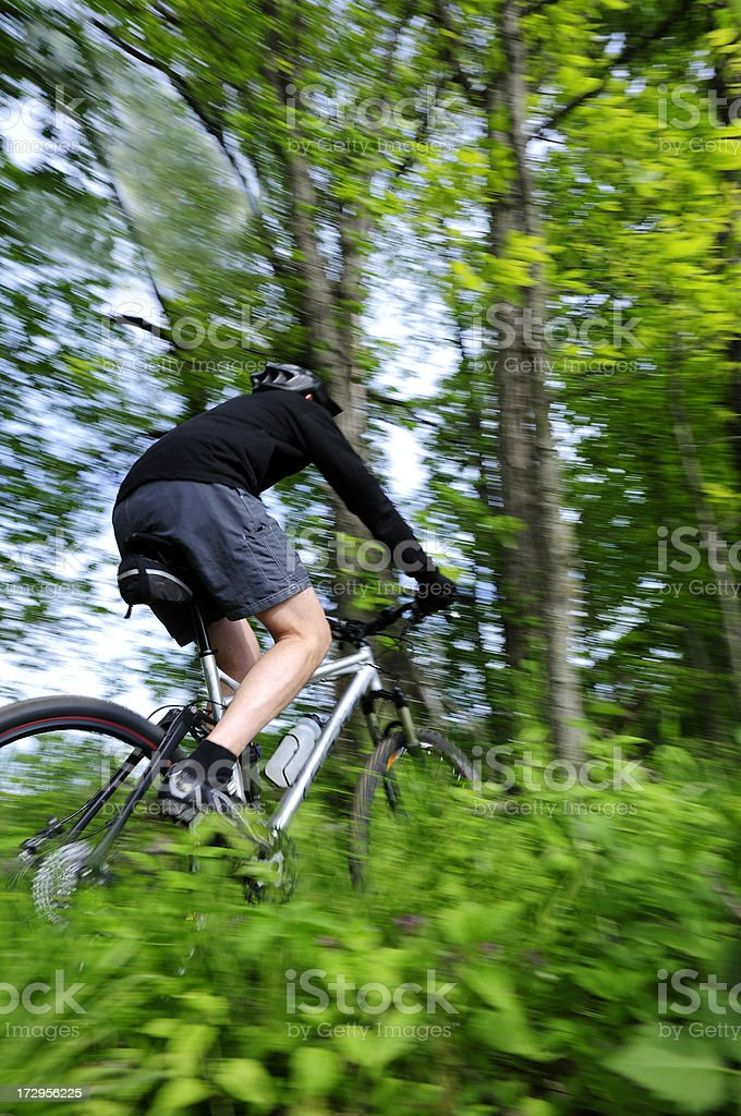 Woods and mountain biker. royalty-free stock photo