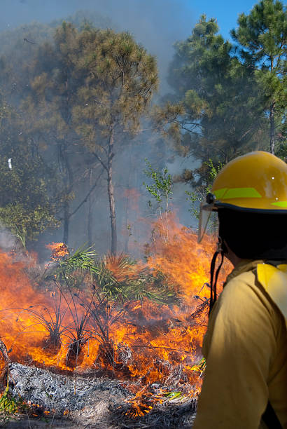 Woods Fire A firefighter watches a wildfire. smoke jumper stock pictures, royalty-free photos & images