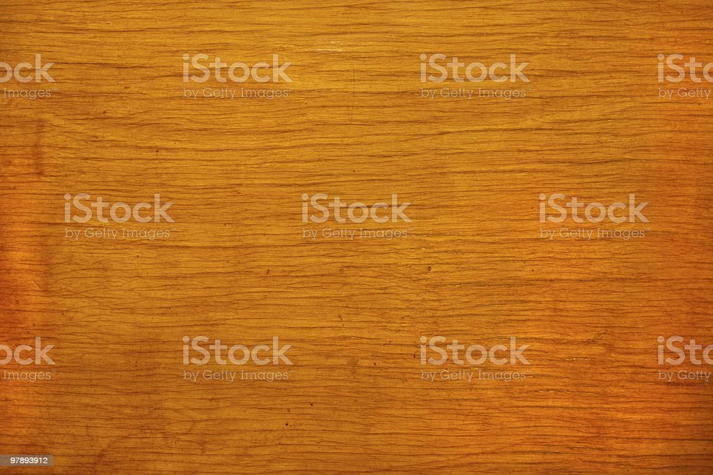 woods royalty-free stock photo