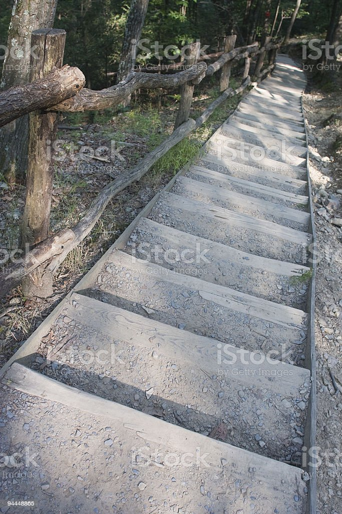 wood's stair in forest royalty-free stock photo