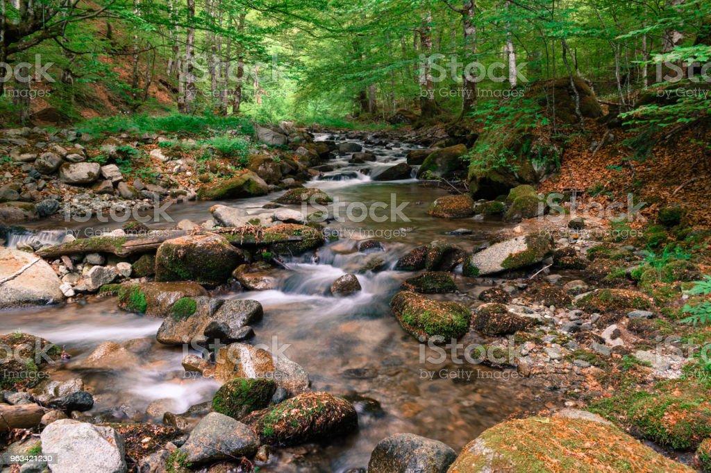 skog vattenfall - Royaltyfri Berg Bildbanksbilder