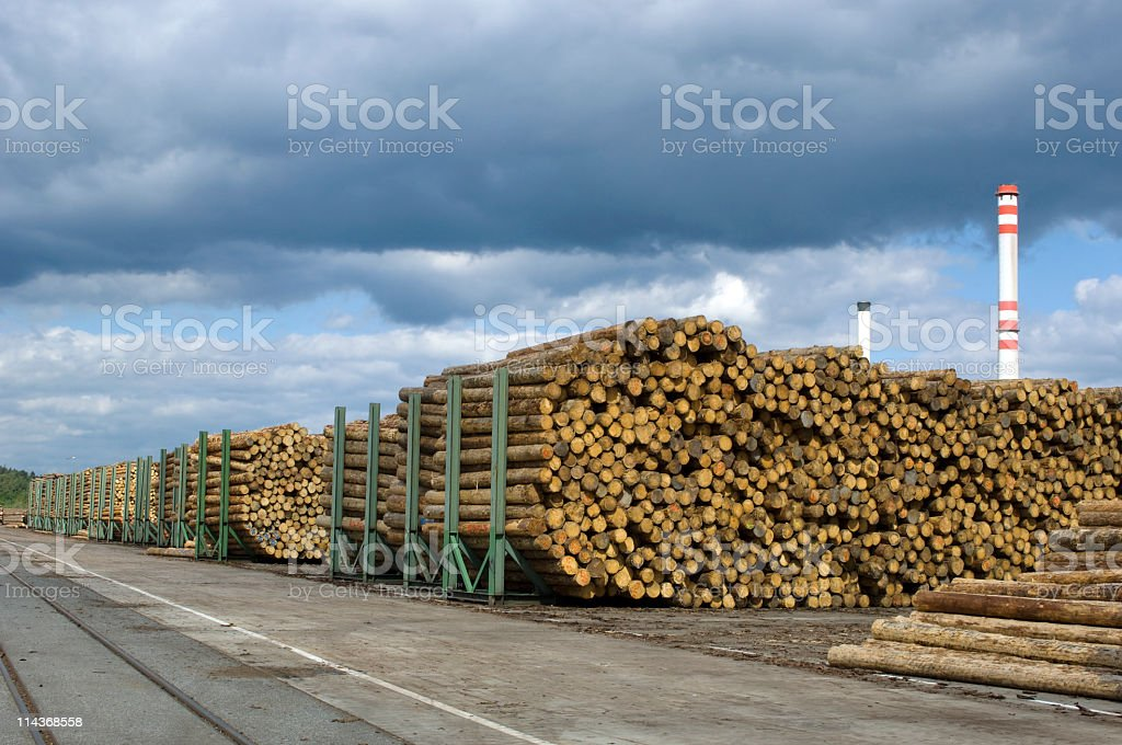 Woodworking in saw mill - yard of timber stock photo