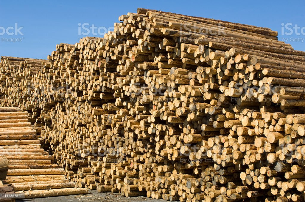Woodworking - saw mill stock photo