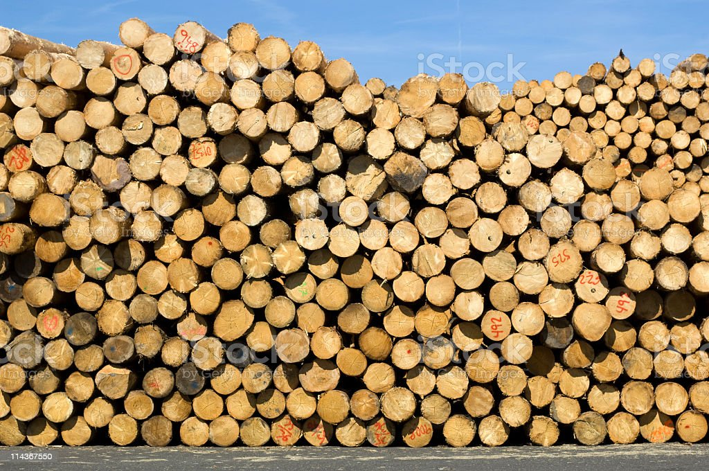 Woodworking - unbarked timber stock photo