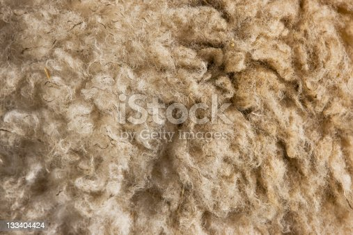 Natural sheep wool background, selective focus, bright, canon 1Ds mark III