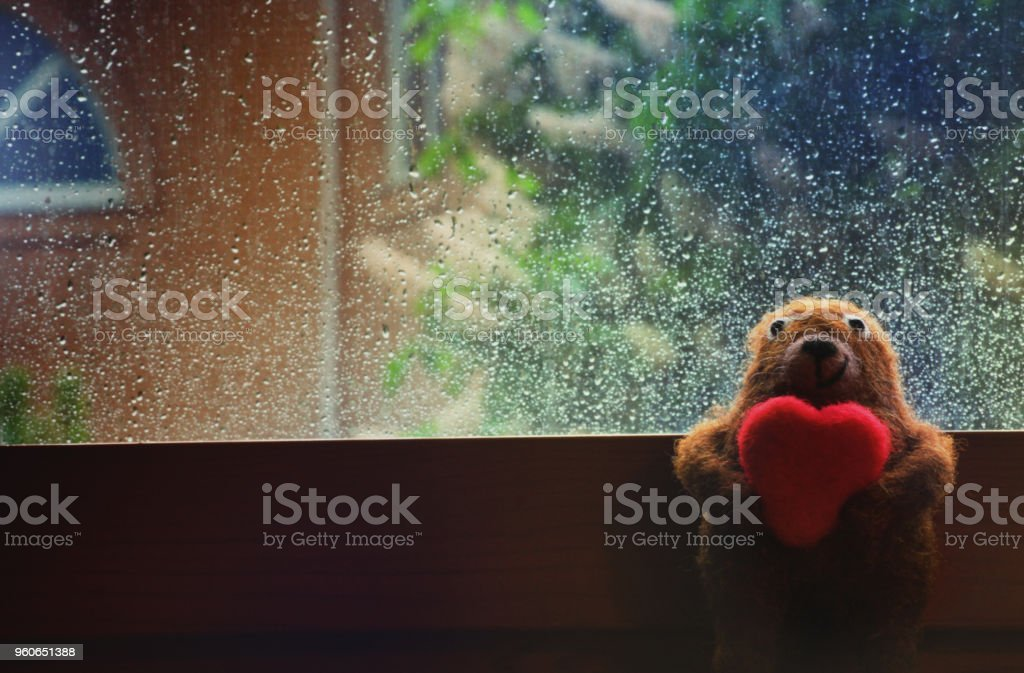 Lanas oso corazón gotas de lluvia - foto de stock