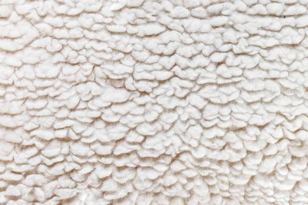 weiße wolle hautnah textur hintergrundbild - teppich baumwolle stock-fotos und bilder