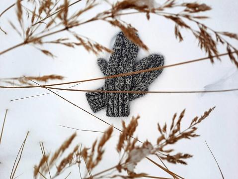 woolen mittens lie in the snow