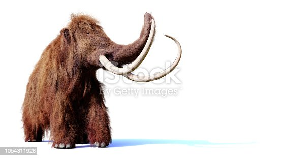 huge mammoth with empty space, cutout on white ground