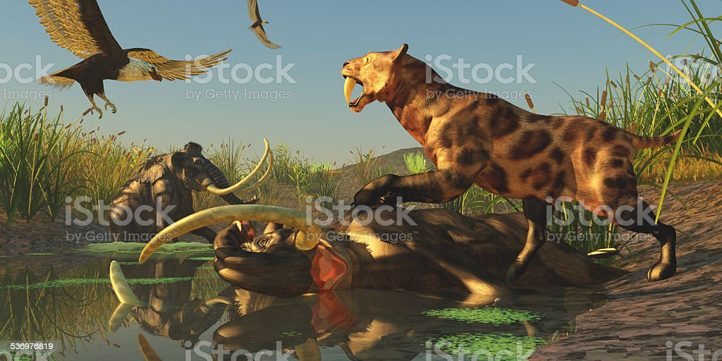 Woolly Mammoth Trap stock photo