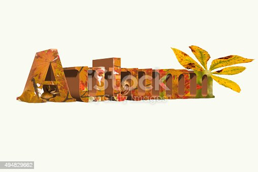 istock Word Autumn and leaf 494829662