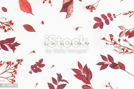 istock Word Autumn, flowers and leaves. Flat lay, top view 831896016