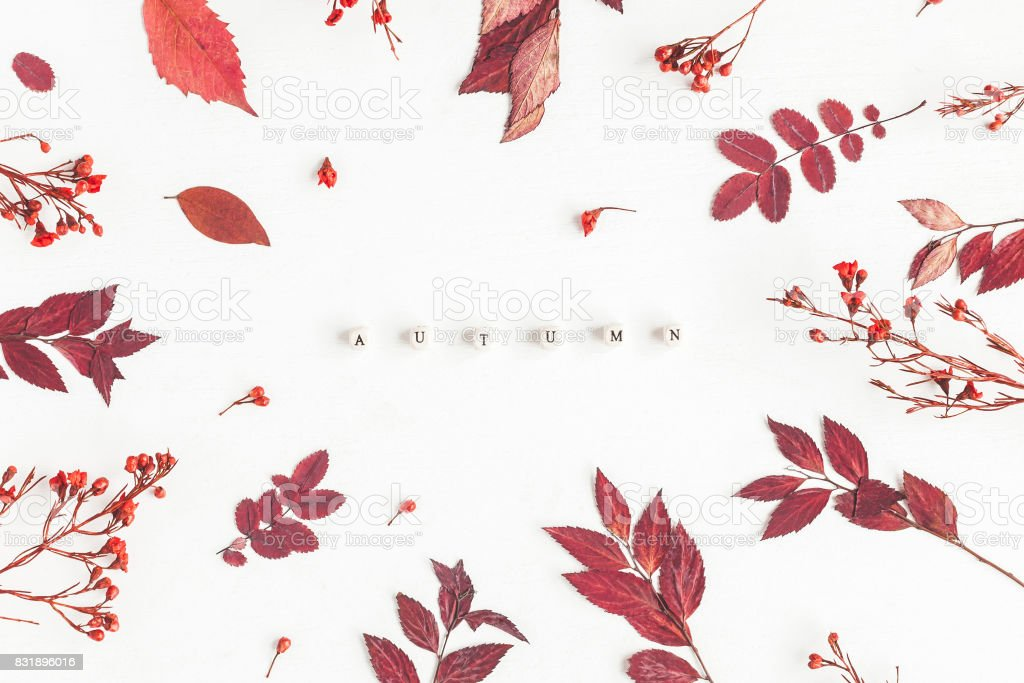 Word Autumn, flowers and leaves. Flat lay, top view stock photo