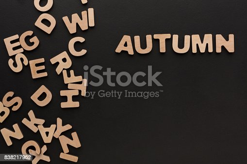 istock Word Autumn with heap of wooden letters 838217952