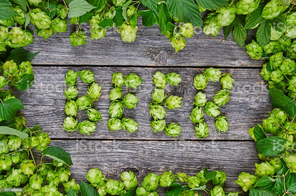 Word BEER made from hop cones stock photo