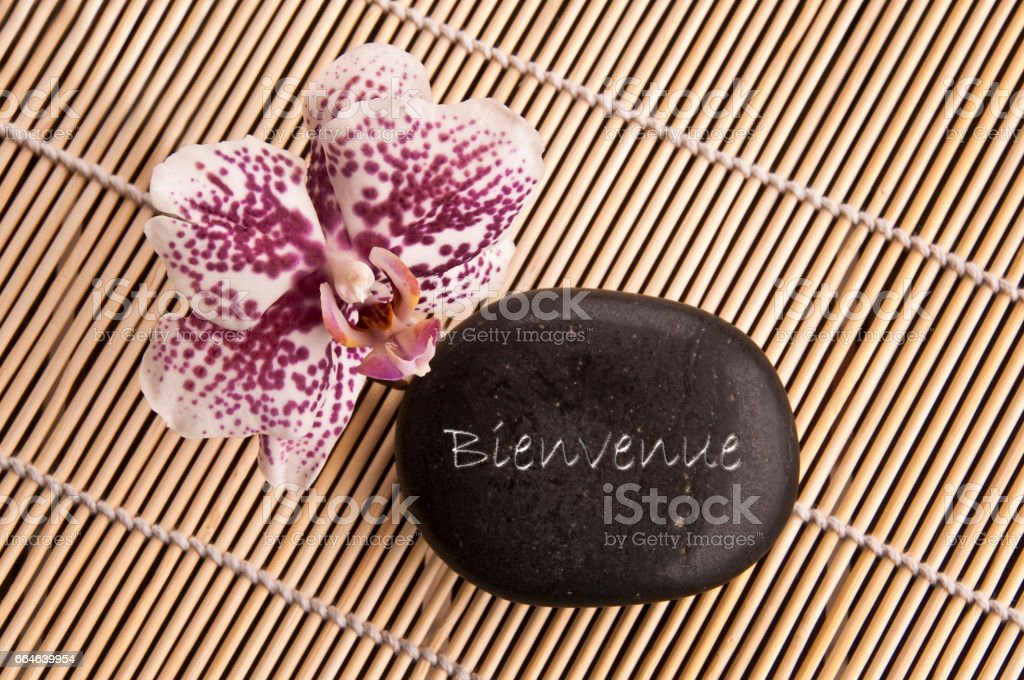 Word Bienvenue (meaning welcome in French) written on a black stone with orchid flower stock photo
