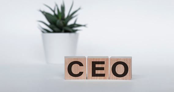 Word CEO made with wood building blocks on a white background