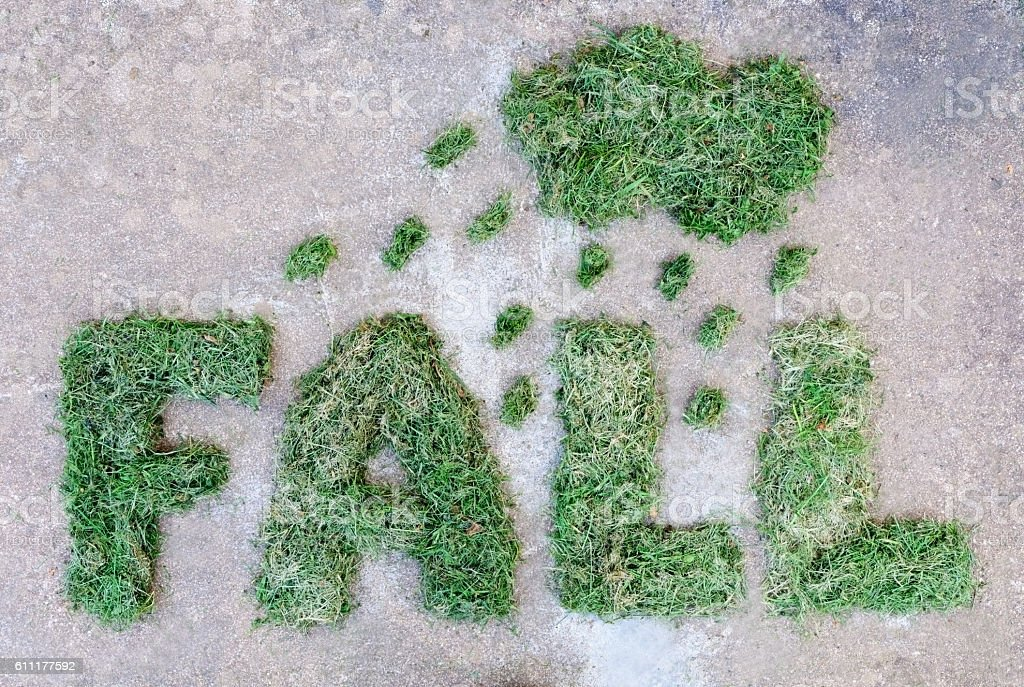 Word FALL made of dried green grass with cloud and stock photo