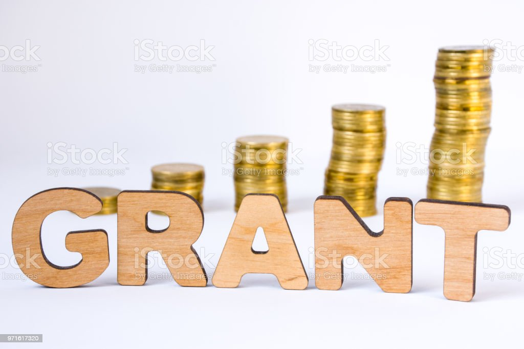 Word grant of three-dimensional letters is in foreground with growth columns of coins on blurred background. Monetary grant concept for starting or development of business, startup, science, trials stock photo