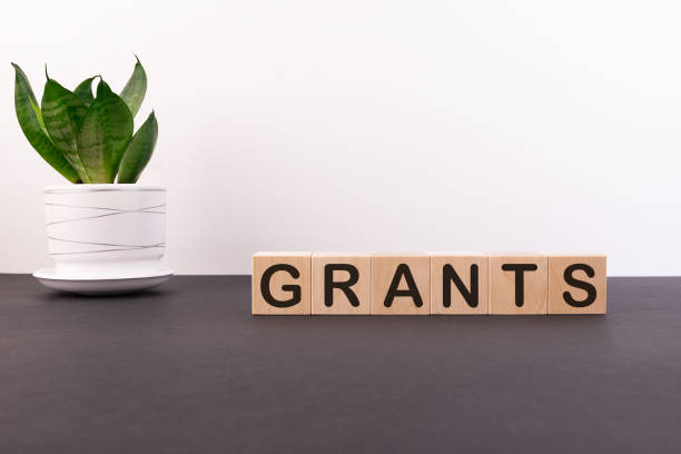 Word Grants is written on wooden cubes blocks on a dark table with a flower and a light background. stock photo