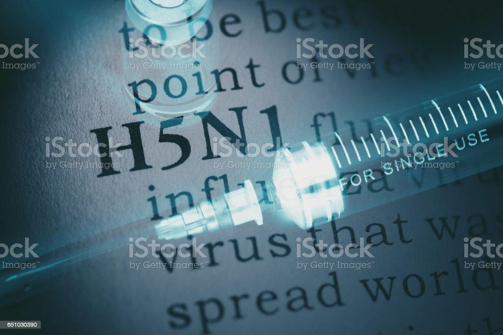 word H5N1 flu and syringe stock photo