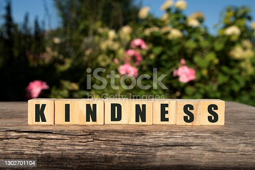 Word KINDNESS made with wood building blocks,stock image