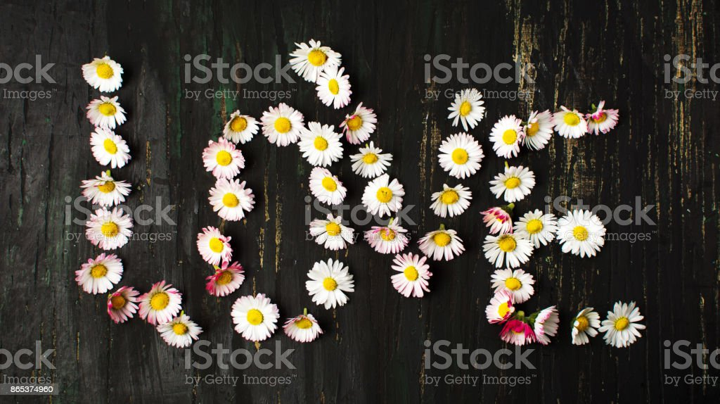 Word love written with daisy flowers stock photo