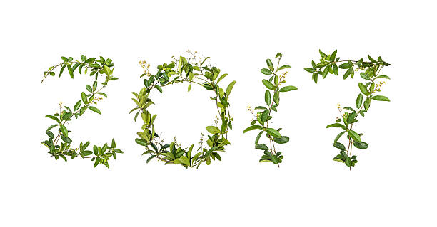 2017 word of creeper flower – Foto
