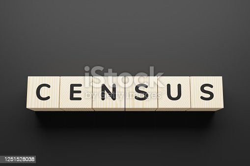 CENSUS word on a wooden blocks.