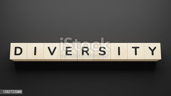 DIVERSITY word on a wooden blocks.