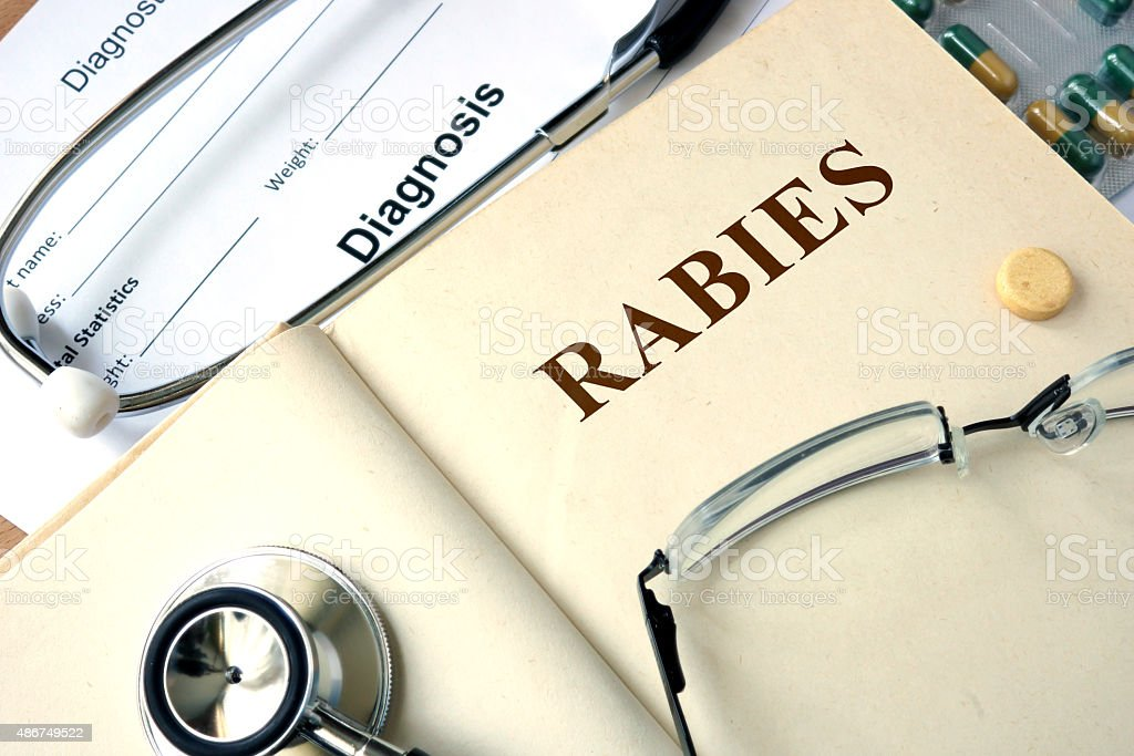 Word Rabies on a paper and pills on the wooden table. stock photo