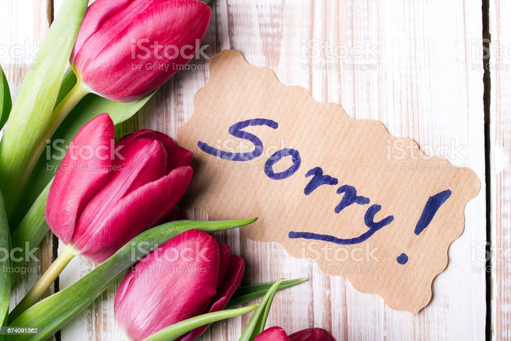 word SORRY and bouquet of tulips on wooden background royalty-free stock photo