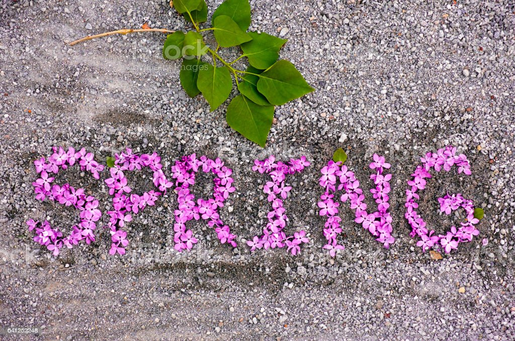is springtime one word