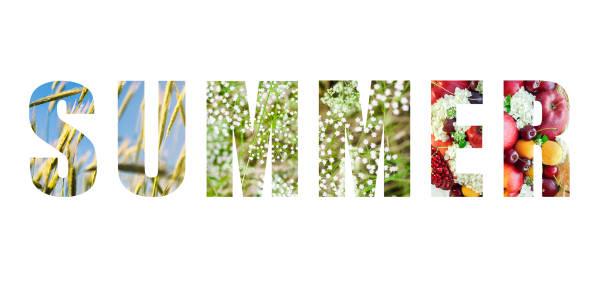 """wort """"sommer"""" - garden types stock-fotos und bilder"""