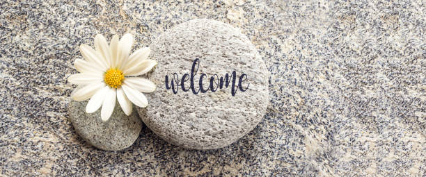 word welcome written on a stone background with a daisy - welcome foto e immagini stock