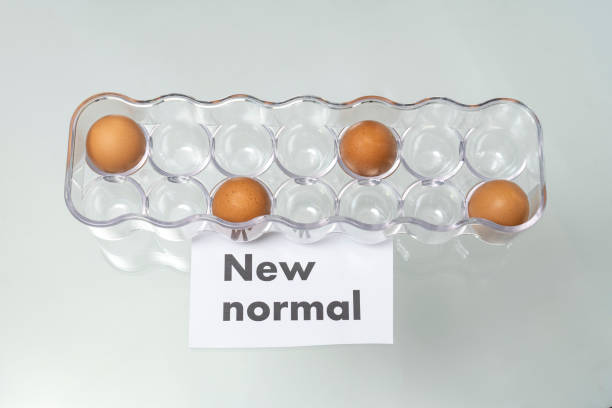 new normal word with eggs in a carton. new normal concept. social distancing. - new normal foto e immagini stock