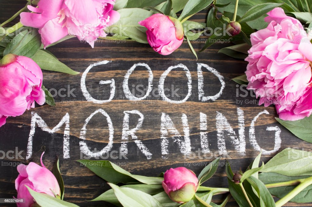 Words Good Morning with  Pink Peonies royalty free stockfoto