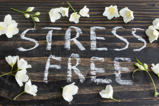 wörter-stressfrei mit jasminblüten - blumendrucktapete stock-fotos und bilder