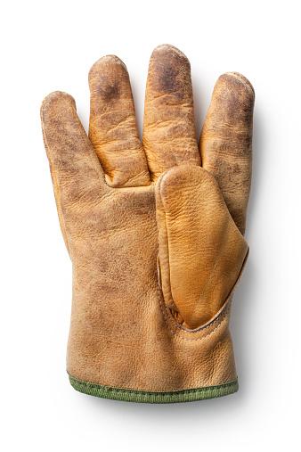 Work glove.