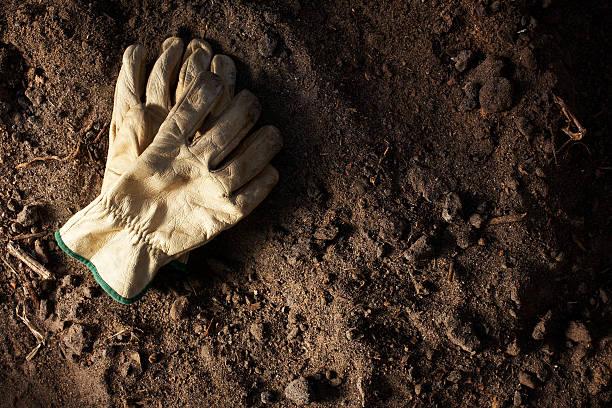 die handschuhe in moto - arbeitshandschuhe stock-fotos und bilder