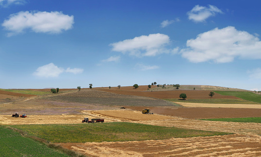 Work In Fields Stock Photo - Download Image Now