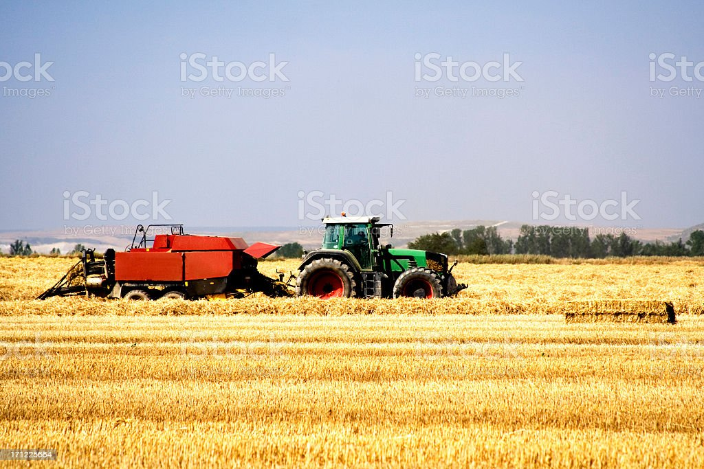 Work in the field royalty-free stock photo