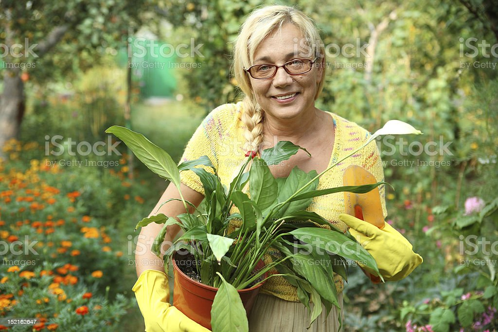 Work in the garden royalty-free stock photo