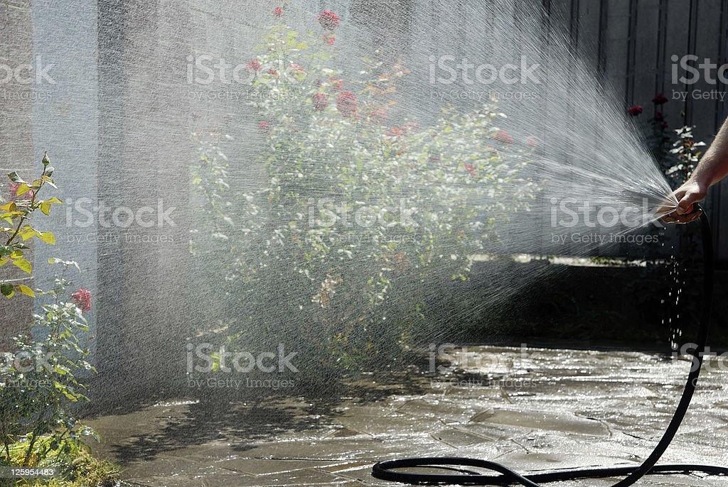 Work of gardener royalty-free stock photo
