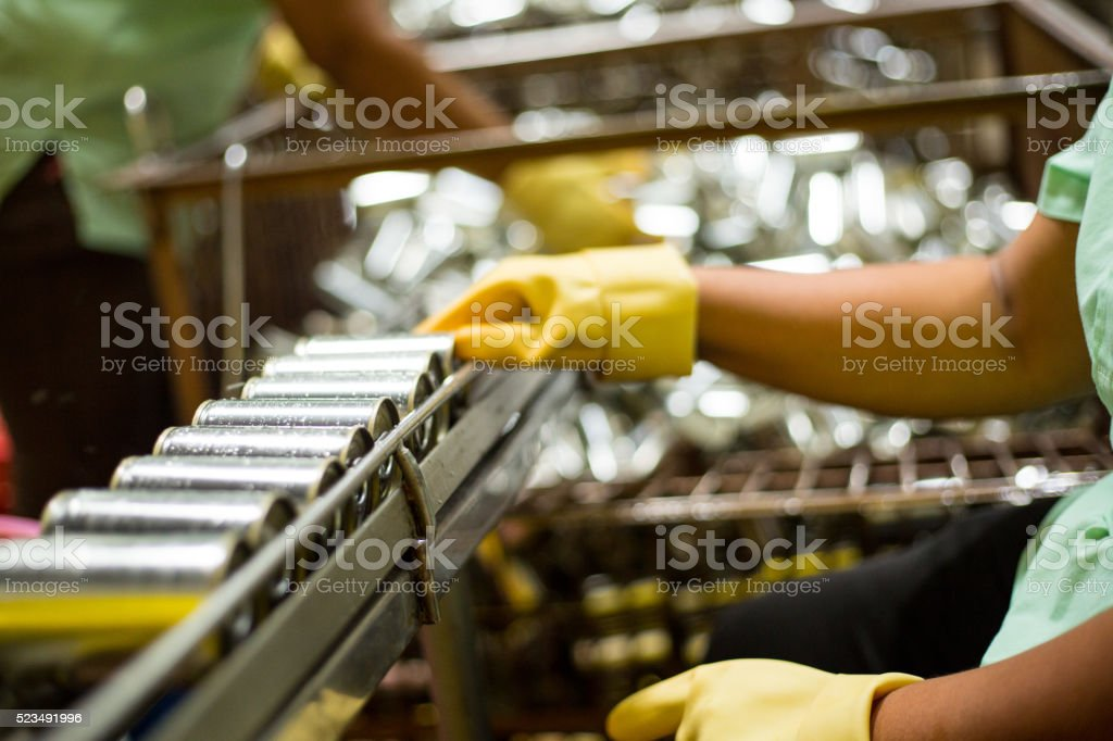 Worker are cleanning raw material Sardines fishes stock photo