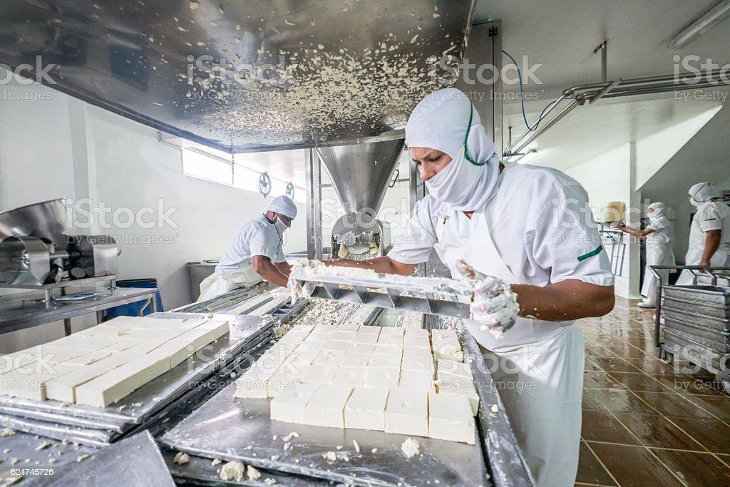 Worker at a dairy factory - foto de acervo