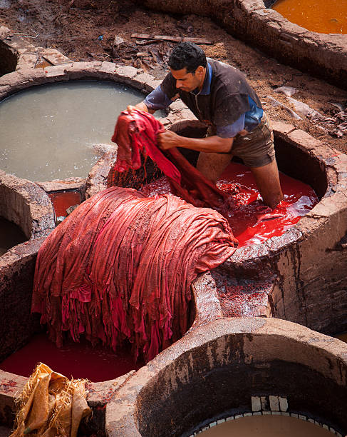 Worker dyeing leather in tannery at Fez Morocco. stock photo