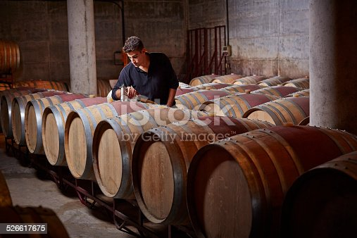 Winery worker fills up barrels in wine cellar
