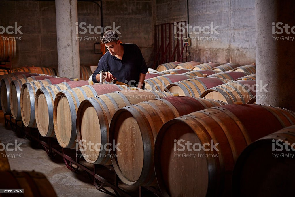 Worker filling up the barrels stock photo