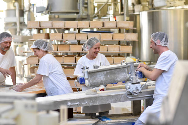Worker in a large bakery - industrial production of bakery products on an assembly line stock photo